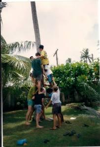 Climbing a cocoanut tree